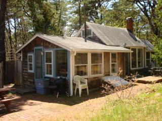 In the National Seashore close to Ocean Beach - Wellfleet vacation rentals