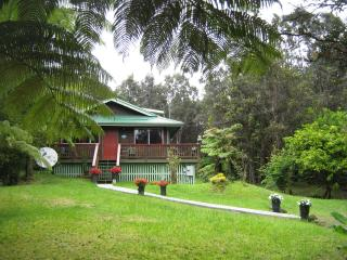 Affordable Volcano Mountain Home $110.00 nightly. - Volcano vacation rentals