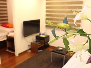 Modern 2 Bedroom Flat Near Central - Hong Kong vacation rentals