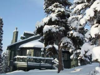 Luxury in Treetops--3BR--Mountain & Ocean Views - Anchorage vacation rentals