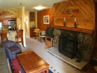 Ski-in/out Condo! Fireplace! Hot Tub! Cute! Slps 4 - Crested Butte vacation rentals