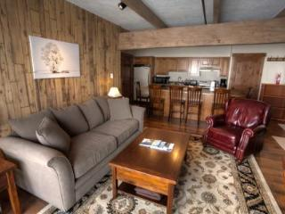 SKI FREE! Cute Renovated Condo! Bus Route! Slps 7 - Crested Butte vacation rentals
