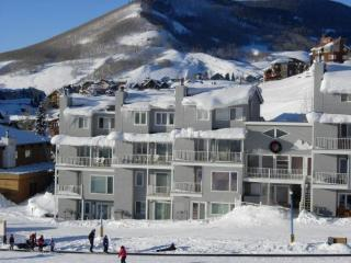 Crested Mountain Condo - Crested Butte vacation rentals