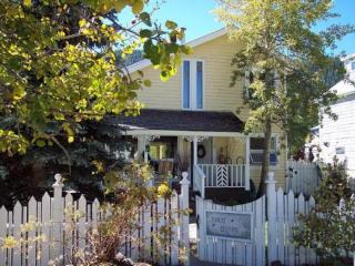 April Cottage - Crested Butte vacation rentals