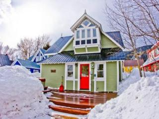 Downtown! Gorgeous! Hot Tub! Slps 8! 5th NT FREE! - Crested Butte vacation rentals