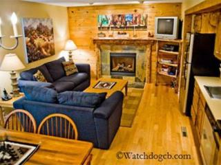 Cute Condo Across from Ski Base! Wifi! Slps 4 - Crested Butte vacation rentals