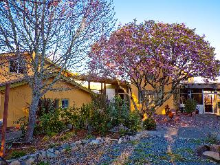 Wine Country Contemporary Carriage House - Sebastopol vacation rentals