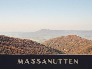 Mountaintop Retreat-11/12-21,3 nights-pay for 2 - Massanutten vacation rentals