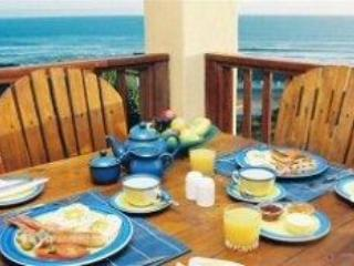 Big Blue Beach Lodge - Image 1 - Port Elizabeth - rentals