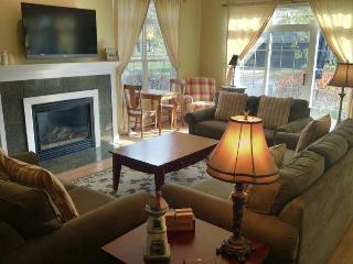 Beacon Court D - Saugatuck vacation rentals