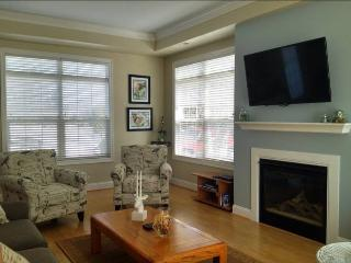 Beacon Court F - Saugatuck vacation rentals
