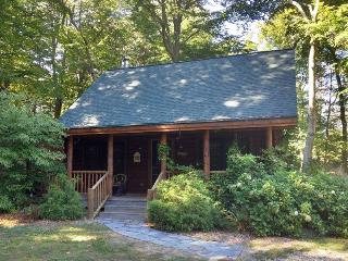 Hidden Dunes 11 - Saugatuck vacation rentals