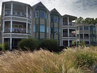 Singapore Harbor 315 - Saugatuck vacation rentals