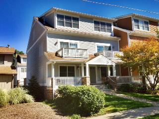 Saugatuck Townhome 7 - Saugatuck vacation rentals