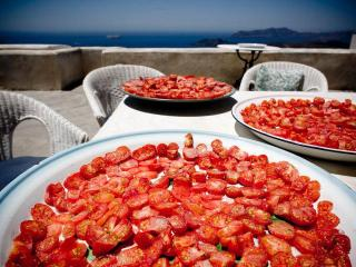 True Greek Hospitality on a Gastronomic Paradise - Santorini vacation rentals