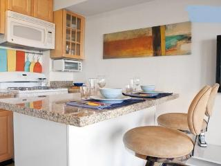 The City View Suite - San Francisco vacation rentals
