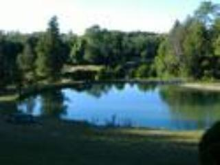 pristine swimming pond - Renewal Retreat- swim, hot tub, v-ball, badminton - Goderich - rentals