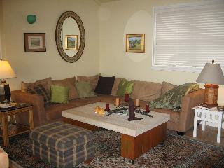 Right on the Beach - Stinson Beach vacation rentals