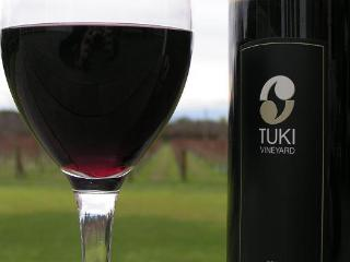 Tuki Vineyard Luxury Cottage - Havelock North - Havelock North vacation rentals