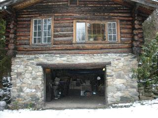 A Log Cabin In the Woods - Stephentown vacation rentals