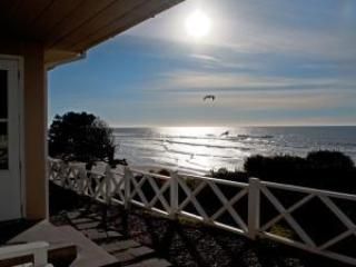 The Executive...Oceanfront 2 bedroom 2 bath home - Lincoln City vacation rentals