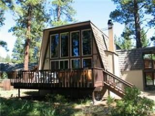 Austin's Dollar Point - Image 1 - Tahoe City - rentals