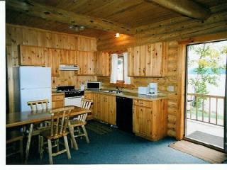 BASSWOOD LOG CABIN Deluxe, Fireplace, Barrier-free - Ely vacation rentals