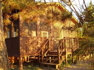 Birch, 3 Bedroom Cabin - Ely vacation rentals
