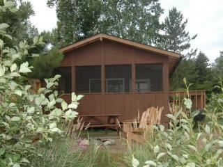 Norway Pine, 3 Bedroom Cabin - Ely vacation rentals