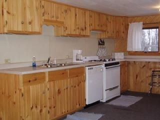 BLUE SPRUCE GUEST HOME - Winterized, Fireplace - Ely vacation rentals