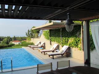 3 Bedroom Villa With Sea View And Private Pool - Paliouri vacation rentals