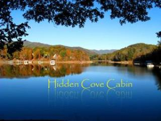Hidden Cove Cabin Lakefront - Private 3 Bedroom Home on beautiful Lakefront lot - Hayesville - rentals