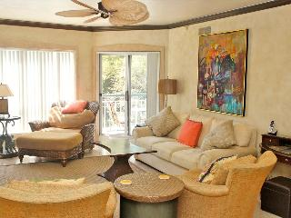 Luxurious Oceanfront Corner Unit, Free Tennis&Wifi - Palmetto Dunes vacation rentals