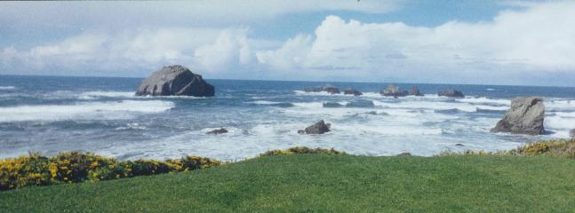 View to seaward on a sunny day - BEACH HOUSE AT FACE ROCK in Bandon-by-the-Sea - Bandon - rentals