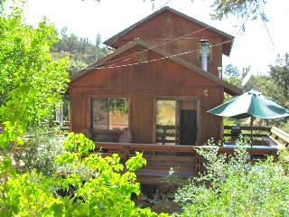 Modern Mountain Cabin, Serenity and Sunshine - Pine Mountain Club vacation rentals