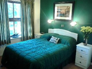 John Peter's beachview condo ocean views 2 bedroom - Tramore vacation rentals