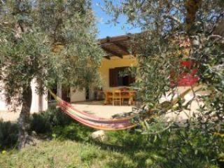 the house - Great value, peaceful B and B close to the sea - Scopello - rentals