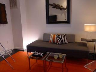 Luxury 1 Bdrm in Historic Rowhouse 1 Blk to Metro - Washington DC vacation rentals