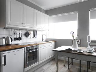 Hlemmur Apartments - Luxurious Downtown Apartment - Reykjavik vacation rentals