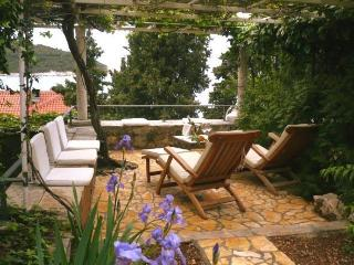 Apartment Emi 2 on best location in Dubrovnik - Dubrovnik vacation rentals