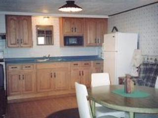 1 Bedroom 1 Bath Lakeside Condo (A) - Birchwood vacation rentals