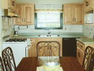 3 Bedroom 2 Bath Lake Home (13) - Image 1 - Birchwood - rentals
