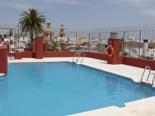 Private rooftop pool, WiFi - Seville vacation rentals