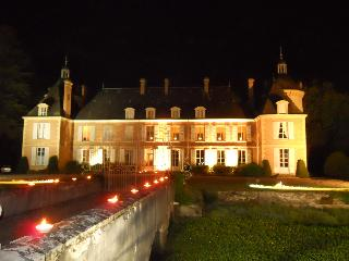 Chateau de Rere - Theillay vacation rentals