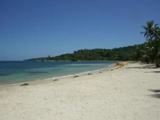 Relax & Enjoy Island Life - Private pool & garden - Roatan vacation rentals