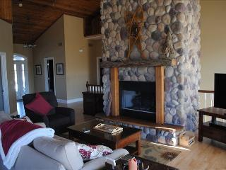 Awesome 5BR Home with hot tub, fire pit, wifi - Galena vacation rentals