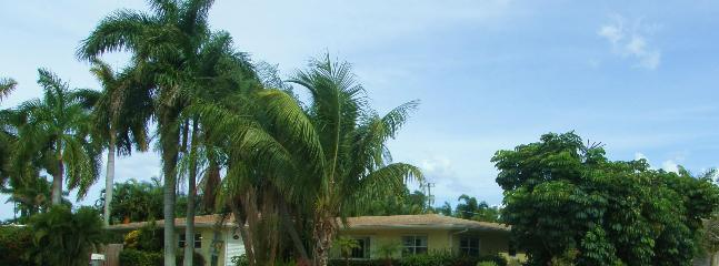 Spacious tropical gardens in East Hollywood. - Image 1 - Hollywood - rentals