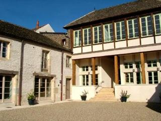 2 bedroom apartment in Pommard, near Beaune - Pommard vacation rentals