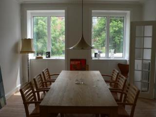 Perfect Family Copenhagen Apt Apartment - Copenhagen vacation rentals