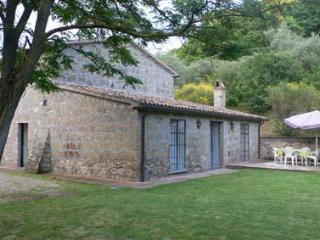 Old stone villa with a garden, panormic view - Castiglione in Teverina vacation rentals